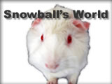 Go to Snowball's World!